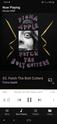 La musica che stiamo ascoltando ora Screen10