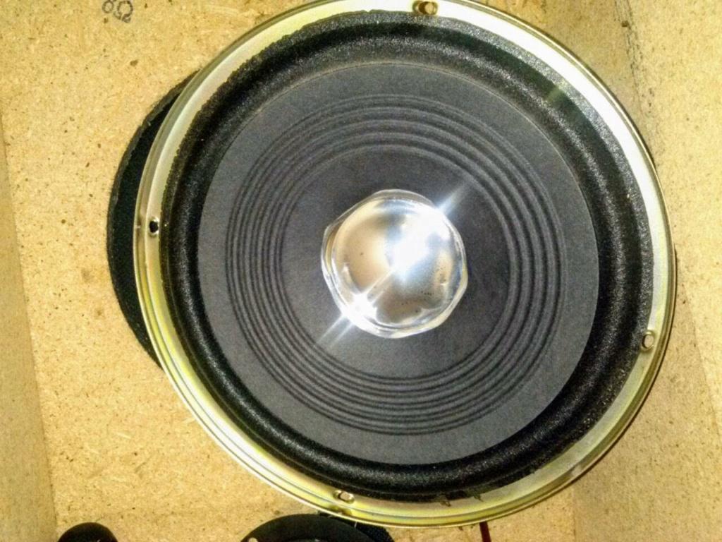 Il mio diffusore da pavimento in SP - Pagina 2 Woof_110