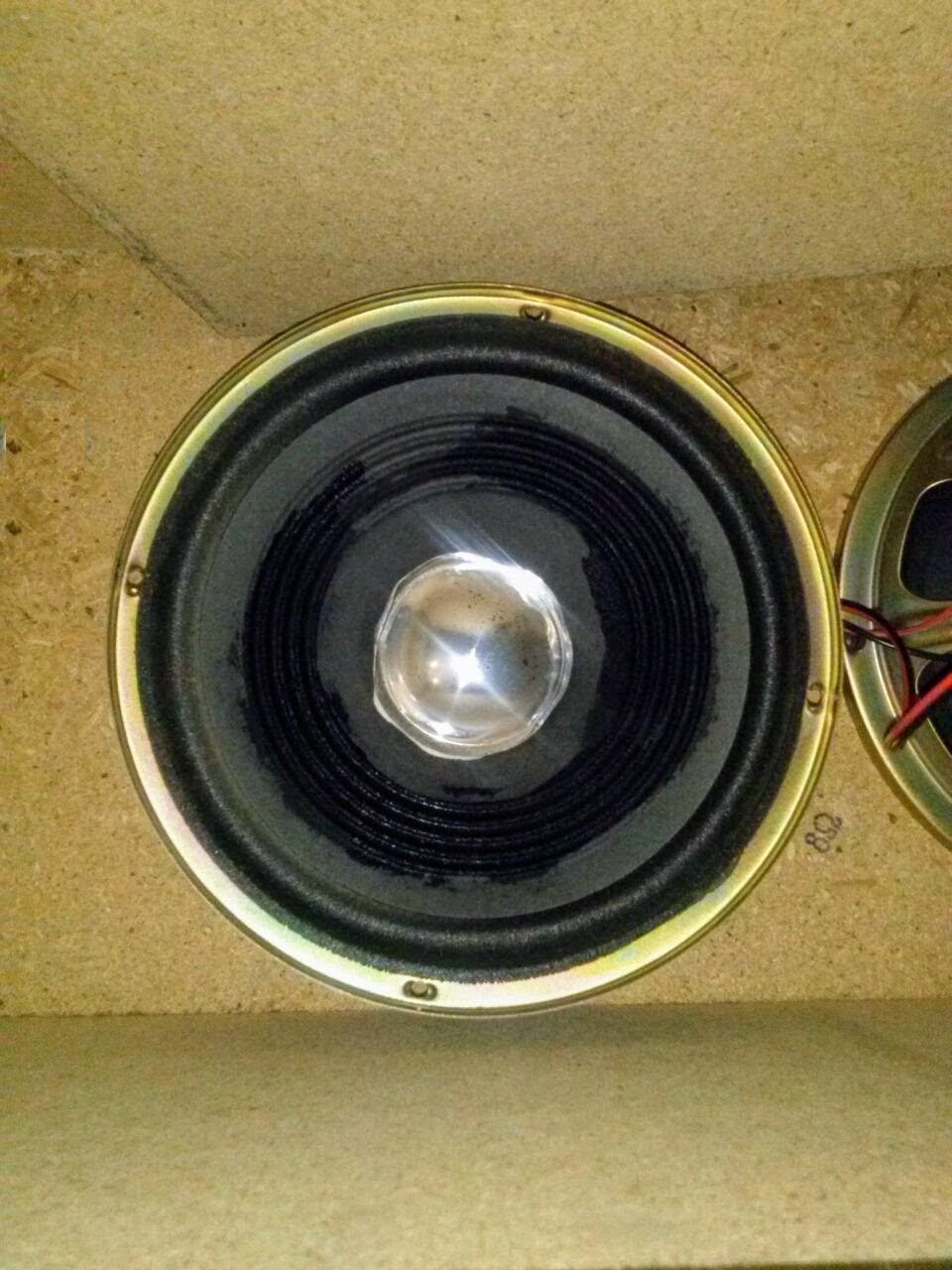 Il mio diffusore da pavimento in SP - Pagina 2 Woof_210
