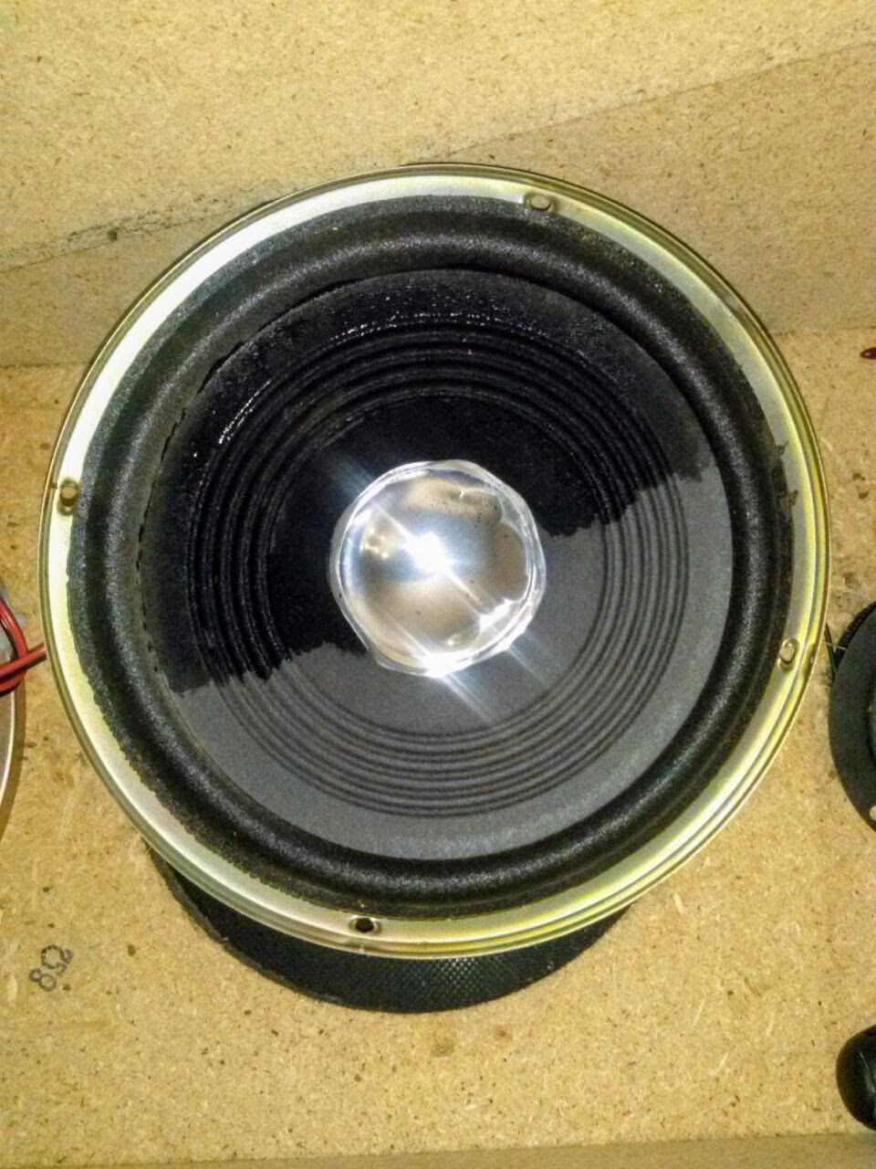 Il mio diffusore da pavimento in SP - Pagina 2 Woof_310