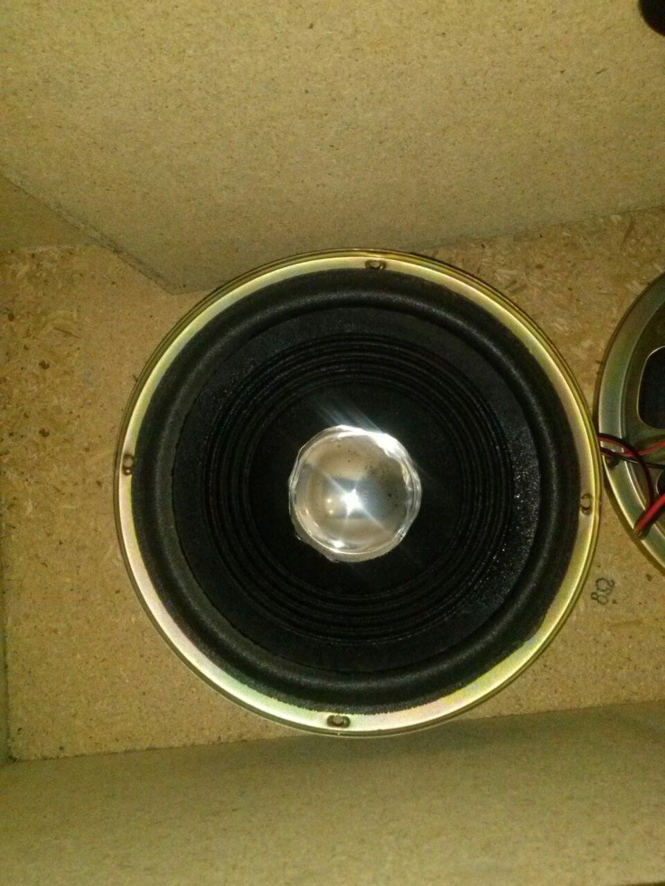 Il mio diffusore da pavimento in SP - Pagina 2 Woof_410
