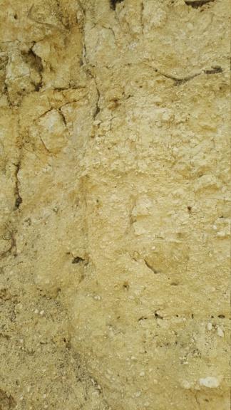 Apport de calcaire 20200711