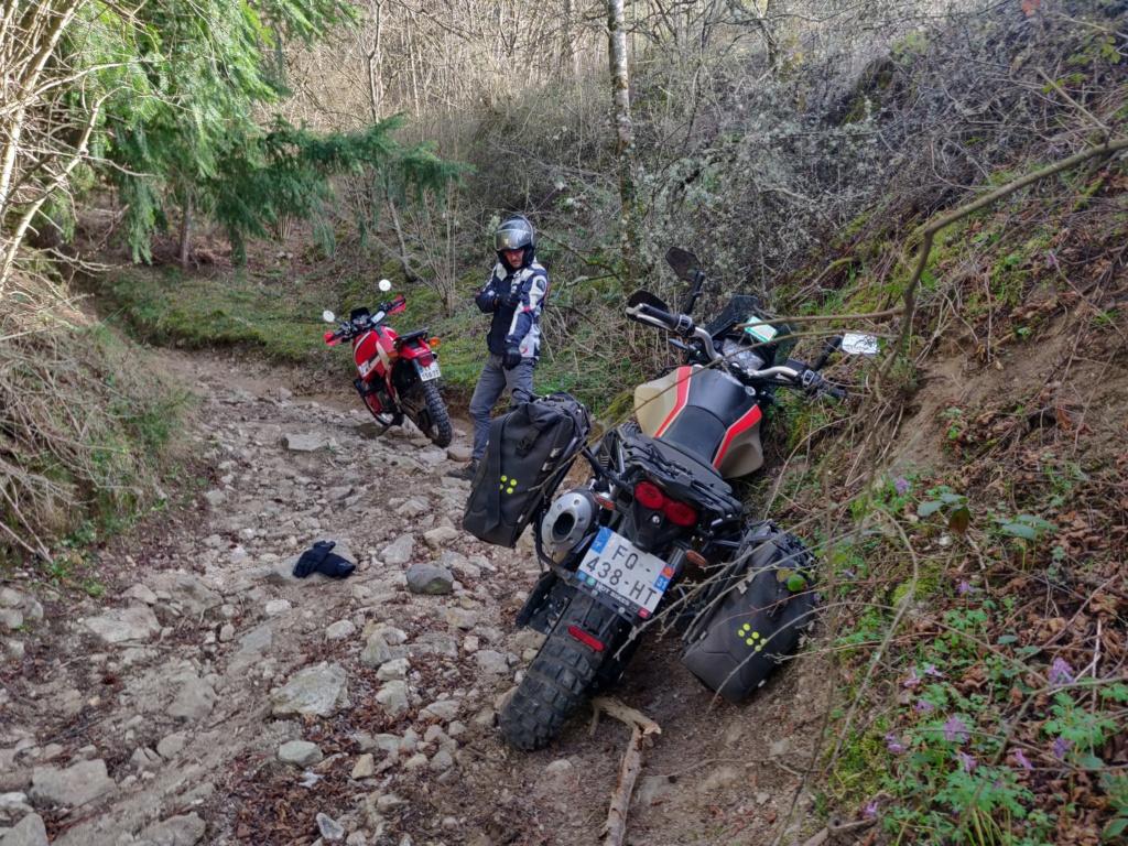 On retourne l'Auvergne Img_2020