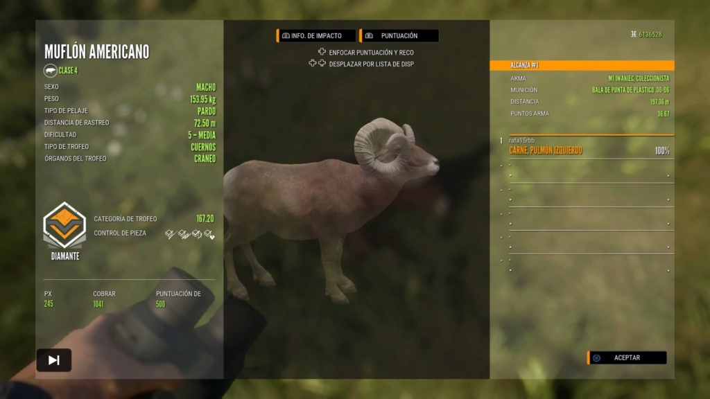 TOP 5 BIGHORN SHEEP Ps_app29