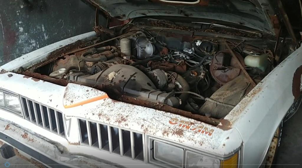 1977 Pontiac Cam Am Build 77_cam11
