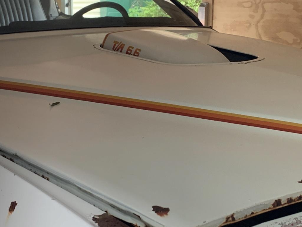 1977 Pontiac Cam Am Build 77_can10