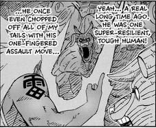 Tsunade vs Sandaime Raikage - Página 4 Pain-470