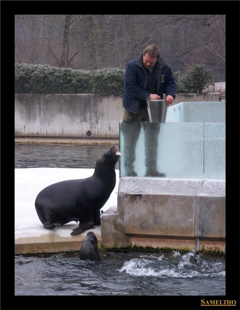 Le zoo de Munich Munich12