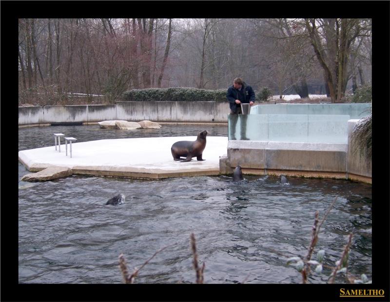 Le zoo de Munich Munich13