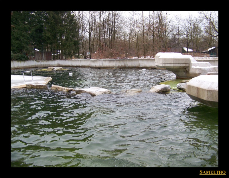Le zoo de Munich Munich17