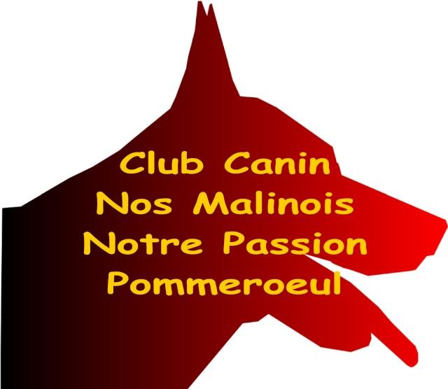 Rencontre Franco Belge Logo_c10