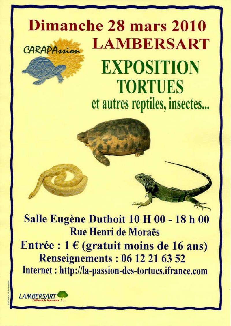 Exposition dimanche 28 Mars >>>>>>> DEMAIN Dimanche Affice10