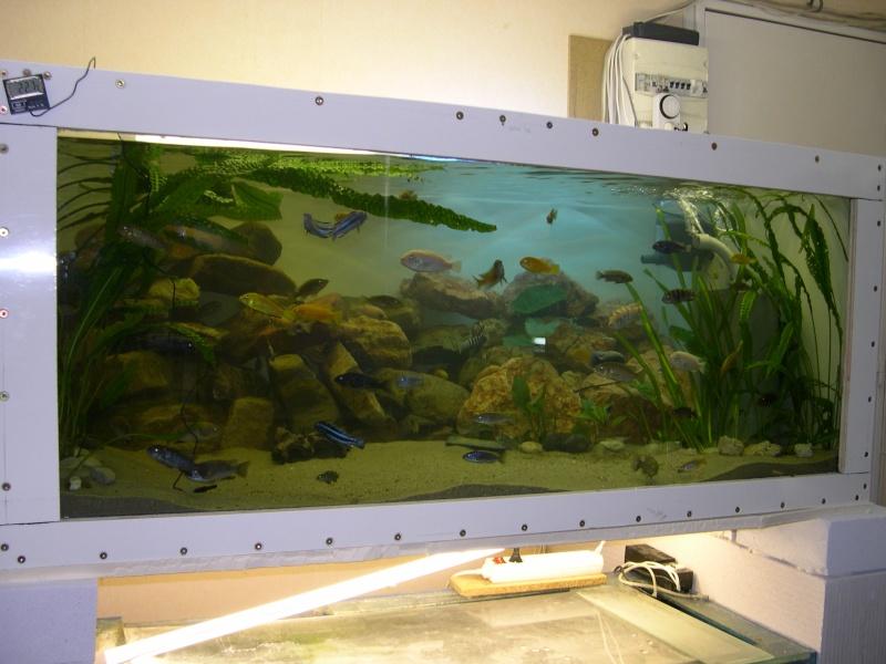 L'Almanach de l'aquarium. Dscn9612