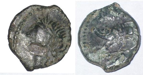 Bronze au sanglier - Némausus Bronze13