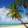 NEWPORT BEACH ♥ - Portail Plus-b10
