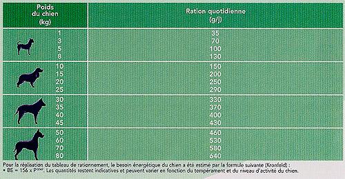 Base de données sur l'alimentation diététique vétérinaire pour chiens insuffisants rénaux Ration10