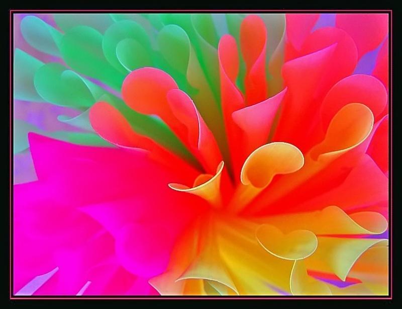 Bouquet...... 10031310