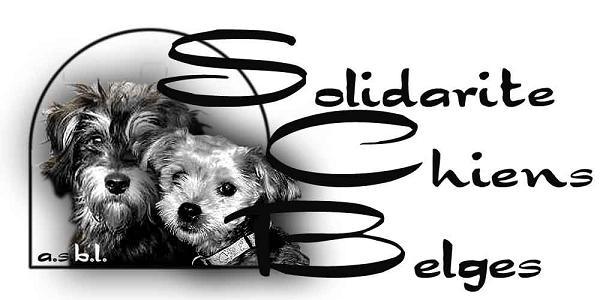 Solidarité Chiens Belges  N° d'agrément: HK30902411