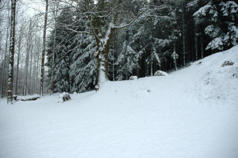 que de neige !! Carlin11