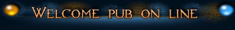 Pub Online Mini_b10