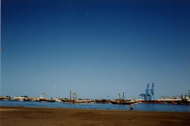 [Campagne] DJIBOUTI - TOME 1 - Page 22 Photo_14