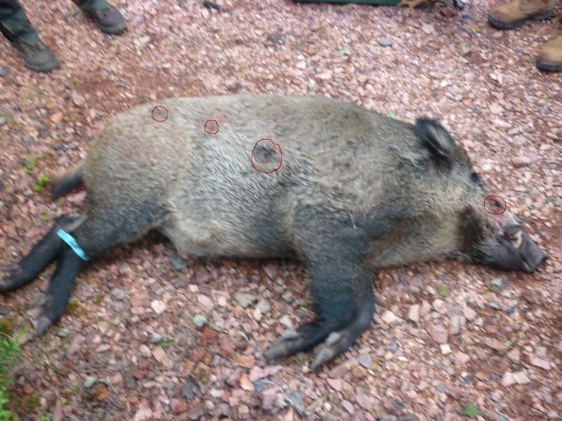 Mort d'un Brave 120_kg10