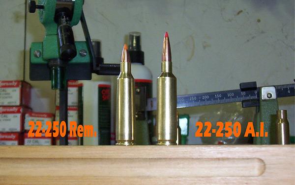 calibre 22-250 rem Caseco10