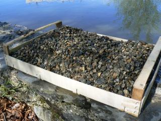 Gestion : Le lac de Dumoret - Page 6 P1030513