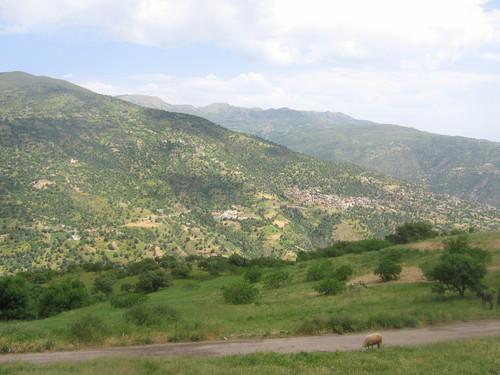 Kabylie belle et rebelle  Villag10