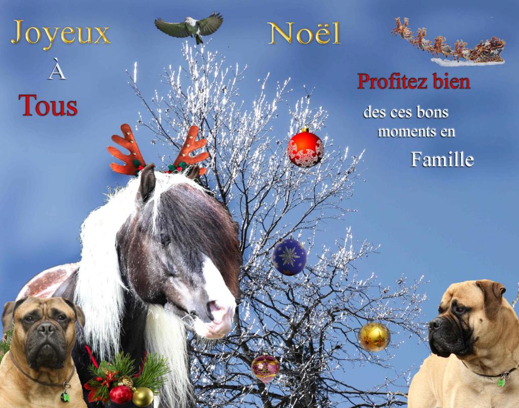 Joyeuses Fêtes à tous et... Magied10