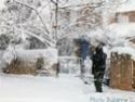concours 12 paysages féériques d'hiver P1020312