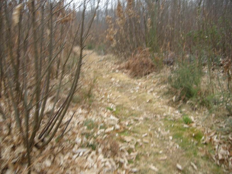 [Trail de Lalinde 2009] Yoyo Trail_17