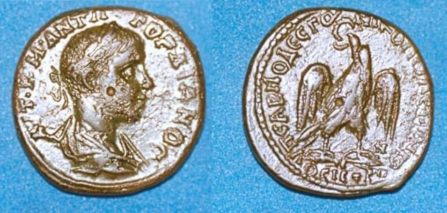 Monnayage de Nikopolis Numari80