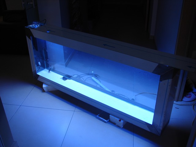 Lancement de mon premier aquarium marin - Page 3 01310