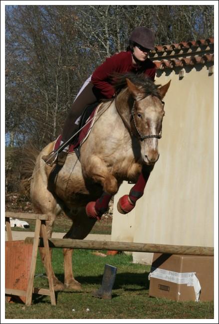 Léo jump Lf310