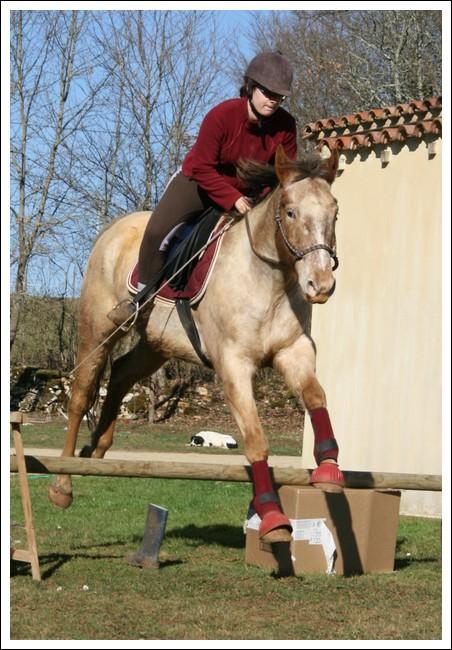 Léo jump Lf410