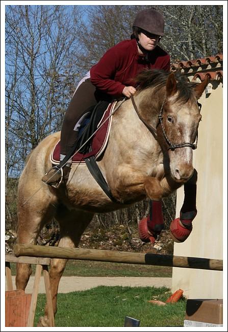 Léo jump Lf810