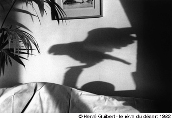 Hervé Guibert, l'écrivain-photographe Herve_10