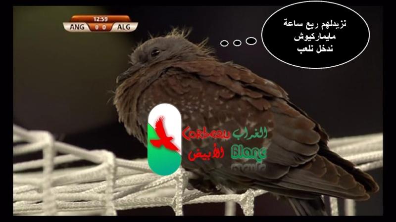 صور وتعاليق من مباراة انجلترا/الجزائر ...هههههه 00000110