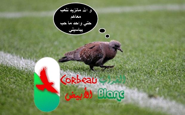 صور وتعاليق من مباراة انجلترا/الجزائر ...هههههه Match110