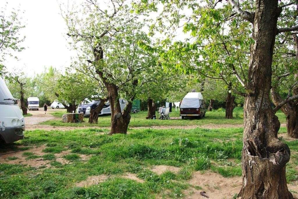 euro camping Imgp1111