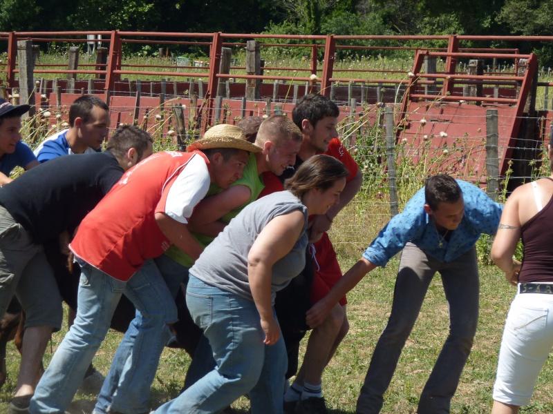 Ferrade du Comité des Fêtes de Langlade à la Manade Vassas P1000912