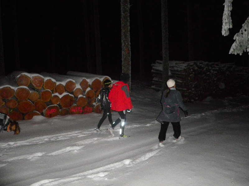 """Sortie nocturne """"neige et papillotes"""" édition 2010 0210"""