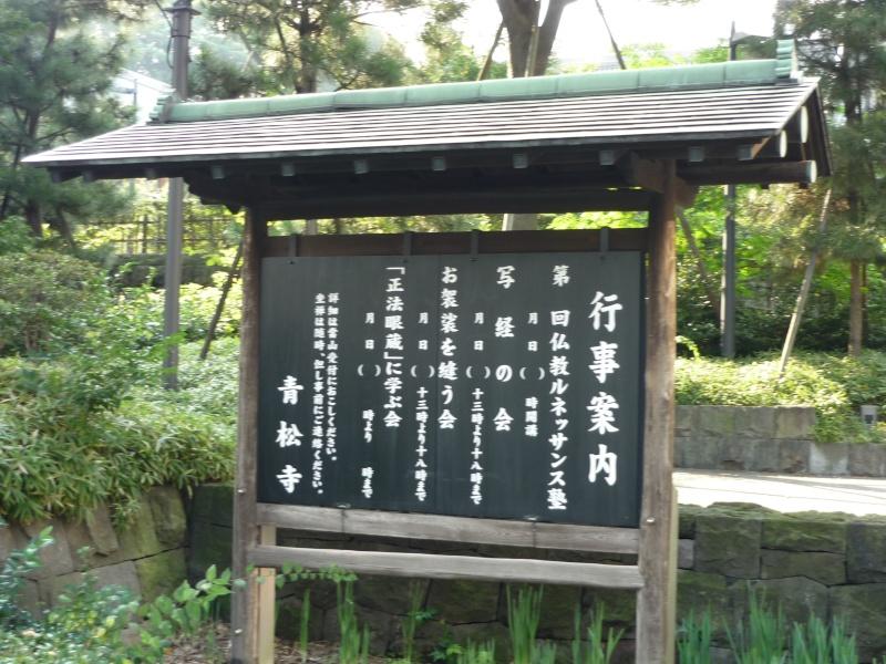 quelques images de Tokyo P1000311