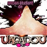 News #27 ϟ Bonne année sur HPH ! Uagado10