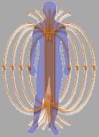 La magnétothérapie : une technique ancienne Magnet10