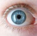 Le procéssus qui mène au cliché visuel Blueye10