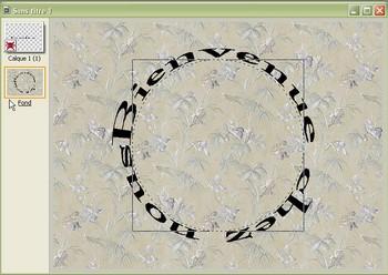 Texte en cercle 310
