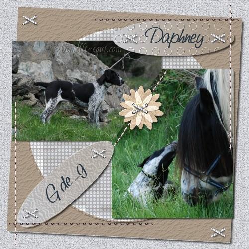 Scraps Digitaux avec Photo Filtre Daphne10
