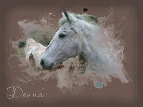PhotoMasque (un an et demi plus tard) Donna710